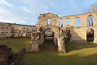 The Bordeaux amphitheatre, known as the Palais Gallien, an early 3rd century Roman arena, Bordeaux, Aquitaine, France. The amphitheatre would have seated 17,000 people and was built to commemorate the visit of Caracalla to the Roman city of Burdigala, now Bordeaux. It is listed as a historic monument. Picture by Manuel Cohen