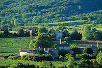 Complex of farm buildings surrounded by vineyards and trees. Early morning sun casts long shadows. Wooded hillside beyond. Goudargues Provence France.