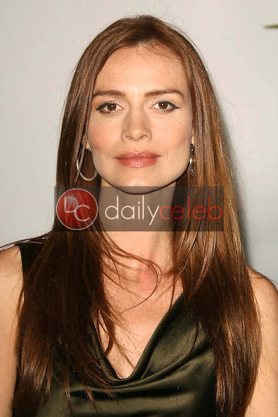 Saffron Burrows<br />at the 2007 ABC All Star Party. Beverly Hilton Hotel, Beverly Hills, CA. 07-26-07<br />Dave Edwards/DailyCeleb.com 818-249-4998