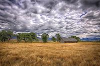 Pasture & Barn - Montana