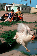 March 1982, Lebanon: in Helweha camp, one of the biggest Palestinian camps of the country. Here children play all day long in the streets and in abandoned buildings destroyed by Israelian airstrike.