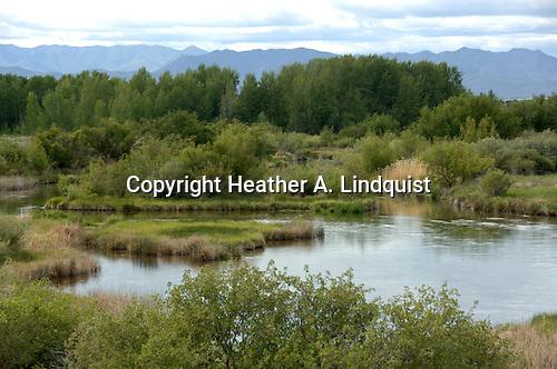 Silver Creek.Nature Conservancy