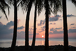 Bodufinolhu Island, Laamu Atoll, Maldives; palm trees on the beach are silhouette against a colorful, sunset sky over the Indian Ocean