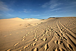 Footprints and ATV tracks crisscross the white dunes, about 30 kilometers north of Mui Ne, Vietnam. Nov. 16, 2011.