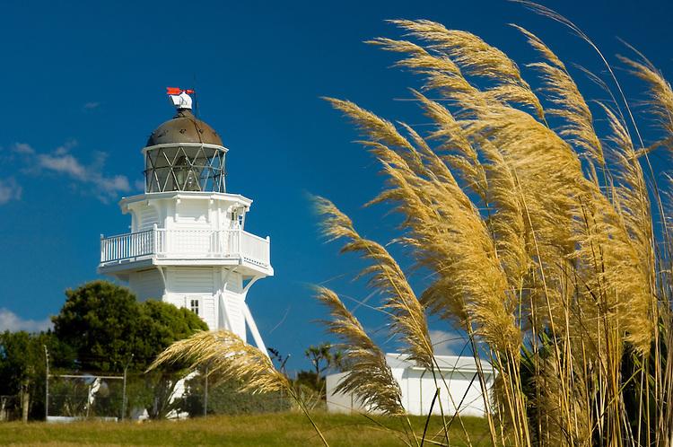 Katiki Point Lighthouse near Moeraki village, Coastal Otago, South Island