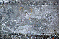 Roman mosaic of the centaur Nessus carrying a bow and a cup, from the House of Ephebe, Volubilis, Northern Morocco. Volubilis was founded in the 3rd century BC by the Phoenicians and was a Roman settlement from the 1st century AD. Volubilis was a thriving Roman olive growing town until 280 AD and was settled until the 11th century. The buildings were largely destroyed by an earthquake in the 18th century and have since been excavated and partly restored. Volubilis was listed as a UNESCO World Heritage Site in 1997. Picture by Manuel Cohen