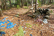 Abandoned campsite along a tributary of the Wild Ammonoosuc River, on the side of Mt. Blue, in Kinsman Notch of the White Mountains, New Hampshire USA