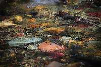 &quot;CUT BANK TREASURE&quot;<br />