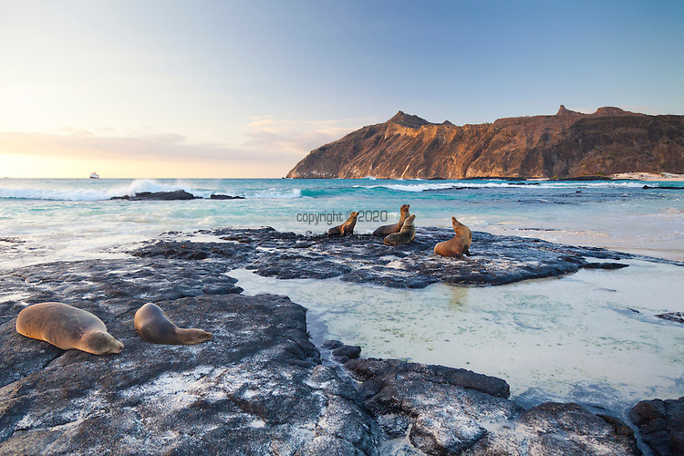 a sandy beach on the island of San Cristobal in the Galapgos National Park, in Ecuador, South America