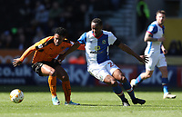 Blackburn Rovers' Ryan Nyambe and Wolverhampton Wanderers' Ivan Cavaleiro<br /> <br /> Photographer Rachel Holborn/CameraSport<br /> <br /> The EFL Sky Bet Championship - Wolverhampton Wanderers v Blackburn Rovers - Saturday 22nd April 2017 - Molineux - Wolverhampton<br /> <br /> World Copyright &copy; 2017 CameraSport. All rights reserved. 43 Linden Ave. Countesthorpe. Leicester. England. LE8 5PG - Tel: +44 (0) 116 277 4147 - admin@camerasport.com - www.camerasport.com