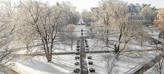 Jan. 14, 2015; Frost covers the trees in the Main Quad as temperature dropped to 5 degrees with wind chills below zero. (Photo by Barbara Johnston/University of Notre Dame)