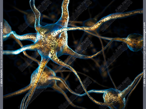 Network of neurons, Brain cell, conceptual 3D illustration