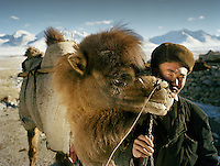 Momo.In the settlement of Qyzyl Qorum, Abdul Rashid' Khan (leader of the Kyrgyz) camp, an old male Bactrian camels is taken out for mating (happens only in winter). .Winter expedition through the Wakhan Corridor and into the Afghan Pamir mountains, to document the life of the Afghan Kyrgyz tribe. January/February 2008. Afghanistan