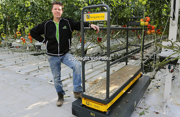 Foto: VidiPhoto<br /> <br /> DINTELOORD - In de gloednieuwe 12,5 ha. grote kassen van tomatenteler Jan van Marrewijk in het Brabantse Dinteloord, worden donderdag de eerste trostomaten (Bella Donna) van het seizoen geoogst. Het plukken gebeurt met een zogenoemde buisrailkar. De volle karren rijden automatisch via lussen in de vloer naar het verwerkingsgedeelte. Foto: Eigenaar Jan van Marrewijk bij een buisrailkar.