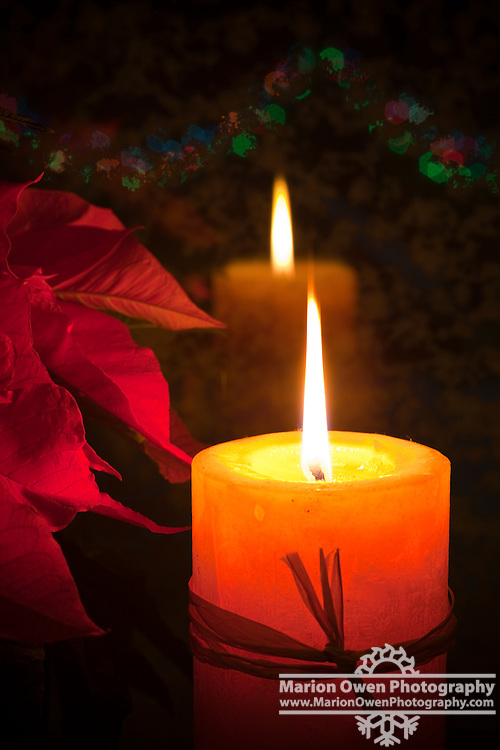 Christmas candle and poinsettia plant reflections in window