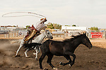 Ranch Rodeos-Will James-Montana