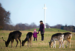 """Mother and daughter look at Fallow Deer (Dama dama) grazing on the """"15 acres"""" in the Phoenix Park, Dublin, with the papal cross in the background. There's been a herd here since the 17th century. They live completely wild elsewhere in Ireland, and were introduced by the Normans in the 12th century."""