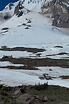 Snowcat driving up Mt. Hood to groom the slopes for snowboarding class in the summer
