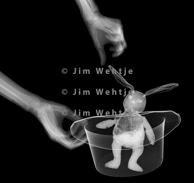 X-ray image of a rabbit in a hat (white on black) by Jim Wehtje, specialist in x-ray art and design images.