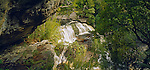 Pegasus Creek and Belltopper Falls in Port Pegasus in Stewart Island (Rakiura) National Park. New Zealand.