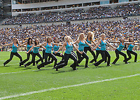 The Pitt Panthers dance team peforms during a break in the game. The Pittsburgh Panthers defeat the New Hampshire Wildcats 38-16 at Heinz Field, Pittsburgh Pennsylvania on September 11, 2010.