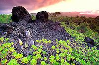 An historic burial site along the Hana-Waianapanapa coastal trail with Haleakala in the background and naupaka in the foreground, Hana