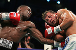 Mayweather vs Gatti