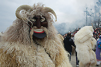 Local people in traditional buso dresses celebrate the Buso Carnival in Mohacs, about 200 km south from the capital city Budapest on March 02, 2014. ATTILA VOLGYI