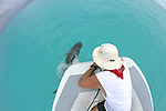 Vance & Bottlenosed Dolphin