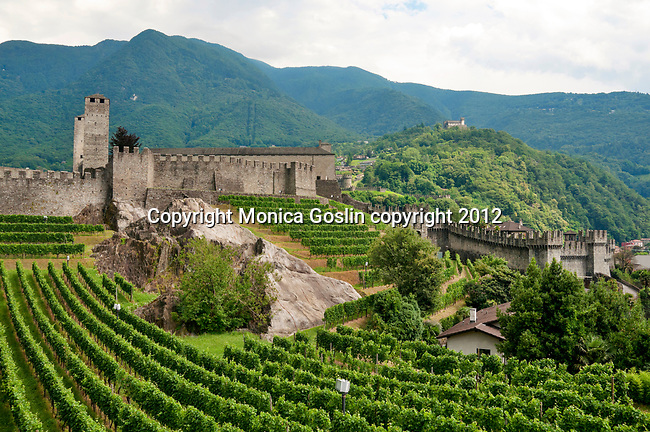 The castle wall and vineyards of Castelgrande in Bellinzona, Switzerland a view of two other castles in the distance