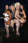 Vivid Cabaret New York Lingerie Party