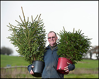 BNPS.co.uk (01202) 558833<br /> Picture: LauraJones/BNPS<br /> <br /> Peter Inch with two of the trees they rent out.<br /> <br /> En-tree-preneur Peter Inch has found an innovative way to stop Christmas trees being discarded after the festive season - by renting and replanting them.<br /> <br /> The businessman has grown around 3,000 pine trees on his farm that he charges people to use in their homes during the holiday period.<br /> <br /> Peter delivers the trees to customers' doors at the end of November and then collects them in the first week of January.<br /> <br /> Once he has picked up the trees they are placed back in the ground in tubs and linked up to a watering system that revives them after being inside for so long.