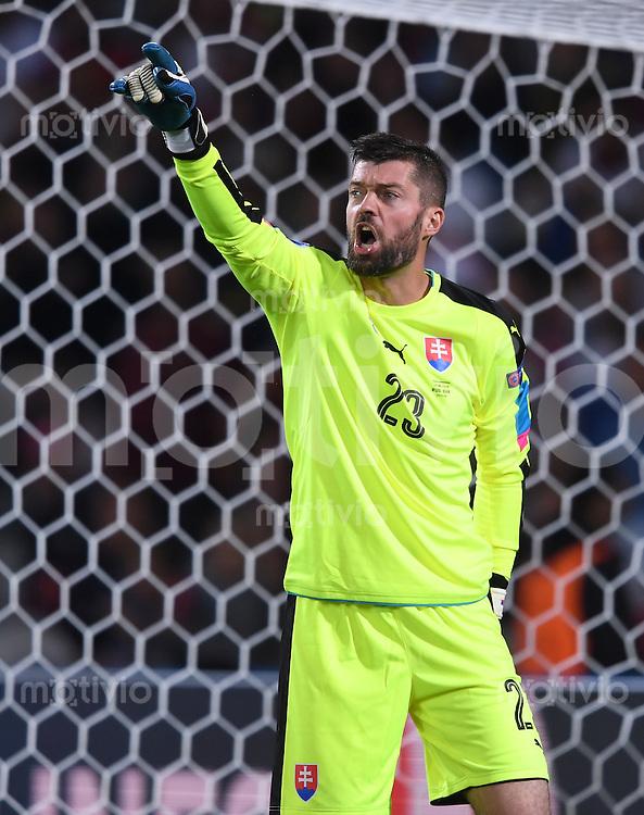 FUSSBALL EURO 2016 GRUPPE B IN LILLE Russland - Slowakei     15.06.2016 Torwart Matus Kozacik (Slowakei)