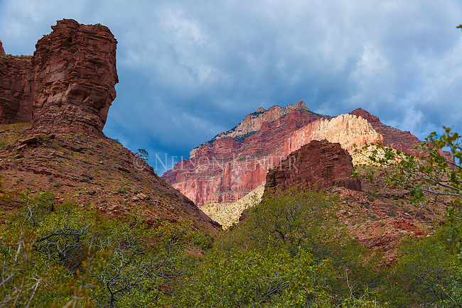 sunlight on the canyon walls above cottonwood campground in the grand canyon