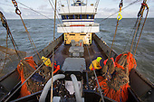 Dutch fishing vessel fishing on the North Sea fishing for Sole and Flounder