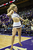March 9, 2013:  University of Washington cheerleader Hannah Tripp entertained the fans during a time out against UCLA.  UCLA defeated Washington 61-54 at Alaska Airlines Arena Seattle, Washington...