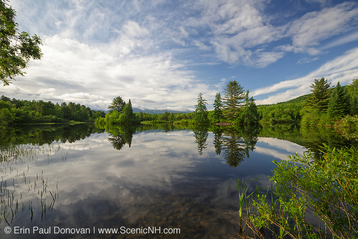 Reflection of trees and clouds in Coffin Pond in Sugar Hill, New Hampshire during the spring months.