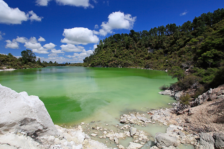 The Green lake at Wai O Tapu thermal region, Rotorua, geothermal scenic attraction, North Island