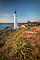 Castlepoint lighthouse at sunrise, Coastal Wairarapa, New Zealand