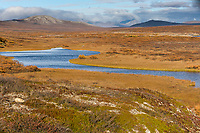 Sinuk river, Kigluaik mountains, Seward peninsula, arctic, Alaska