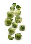Brussel Sprouts still life.