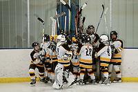 Badger State Winter Games '08 - Squirt Hockey - Wausau vs McFarland