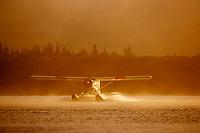 Bush plane takes off from Naknek lake in the morning fog, Katmai National Park, Alaska.