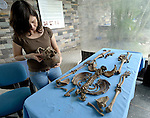 Shirley Chacón, an investigator with the Forensic Anthropology Foundation of Guatemala, examines remains her team dug up in a rural village. This team exhumes victims of the country's bloody civil war and compiles evidence about their killings, in an effort to help communities rebury their dead in appropriate fashion and begin a process of demanding justice for those responsible for the violence.