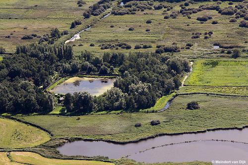 Kobbekoai (eendenkooi) in natuurgebied Grutte Wielen (Grote Wielen).