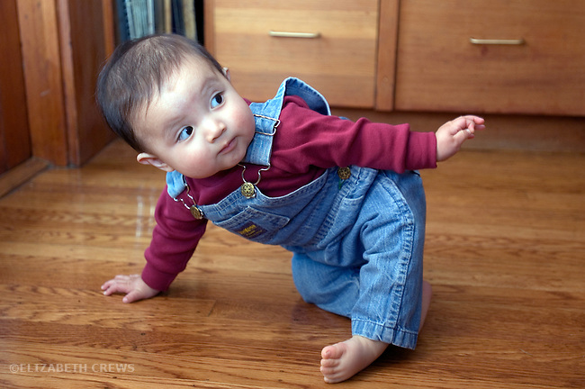 Berkeley CA Gualemalan baby, eight-months-old raising herself up to balance on one hand  MR