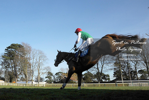INCENTIVISE ridden by Micheal Nolan jumps the last fence. Race 4. freebets.co.uk Southern National Handicap Chase. Food & Drink Southern National Raceday. Fontwell Park Racecourse. West Sussex. 18/11/2012. MANDATORY Credit Garry Bowden/Sportinpictures - NO UNAUTHORISED USE - 07837 394578