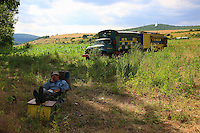 On the road to the village of Ciucurova, a beekeeper takes a nap. Apart from the times in the month for harvesting, extracting and storing, the months of migration are organized around life on the campsites. The bulk of the work, preparing the hives, is over: the beekeepers still practice the dividing up of the hives to create new colonies, but their main activity remains the caretaking of their stocks.