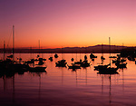 Sunrise with silhouetted sailboats Monterey Bay California USA