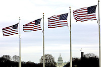 United States flags blow in the wind framing the U.S. Capitol building in Washington, DC.